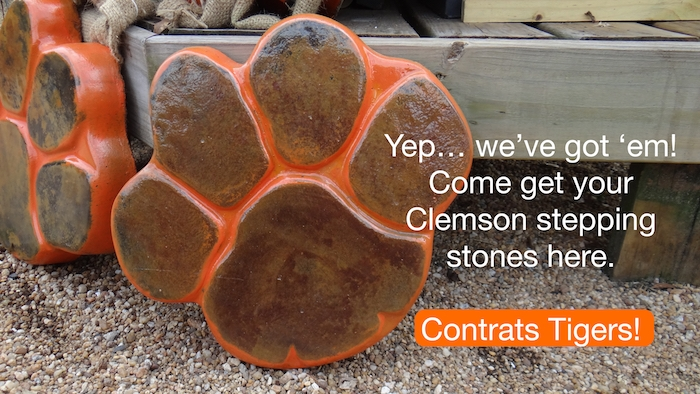 Clemson Stepping Stones