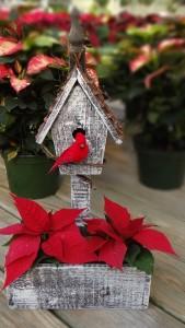 poinsettia-bird-house-500px